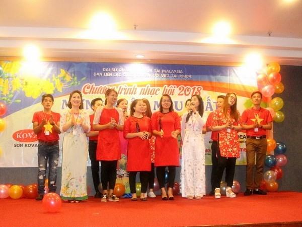 旅居德国和马来西亚越南人欢欢喜喜迎接2018戊戌年春节 hinh anh 3