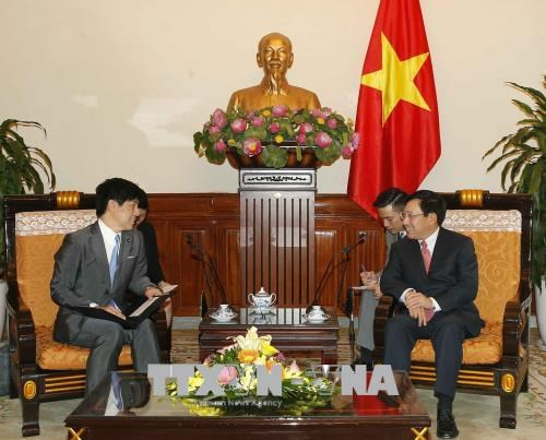 日本愿在各国际场合同越南保持紧密配合 hinh anh 1