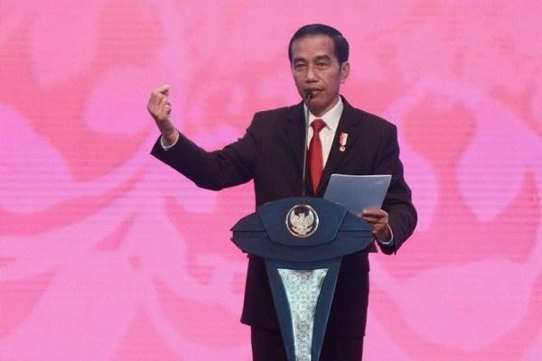 印尼总统佐科·维多多对阿富汗进行正式访问 hinh anh 1