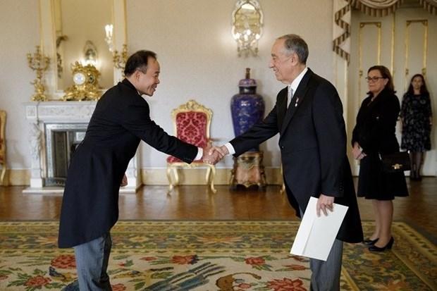 越南希望推动与葡萄牙友好合作关系向前发展 hinh anh 1
