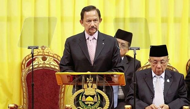 文莱苏丹任命新的皇家武装部队司令 hinh anh 1