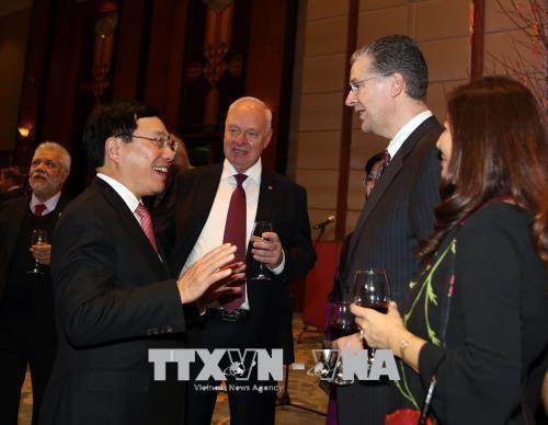 越南政府副总理范平明会见各国驻越外交使团代表 hinh anh 2