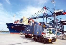 越南国轮包揽国内沿海集装箱运输市场 hinh anh 1