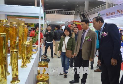 2018年岘港市春节年货展销会热闹开展 hinh anh 1