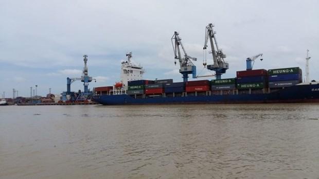 努力提高越南航海业的竞争力 hinh anh 1
