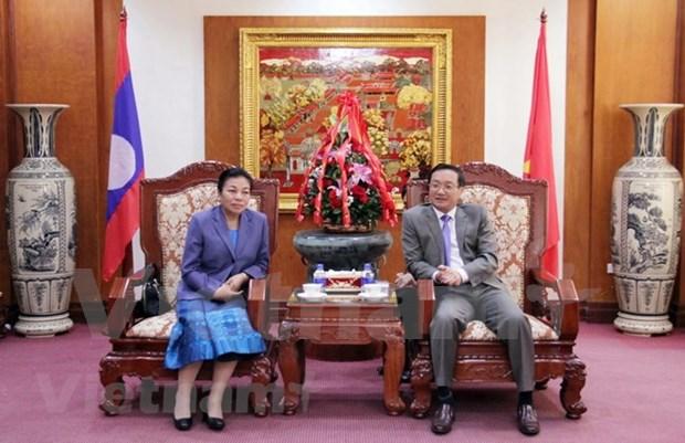 老挝人民革命党中央对外部部长:越南的成就和胜利为老挝的发展注入动力 hinh anh 1