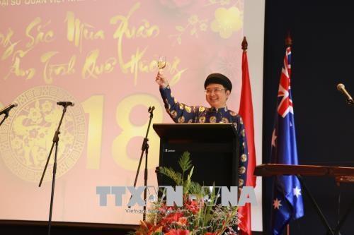 旅居世界各国越南人纷纷举行迎新春活动 hinh anh 3
