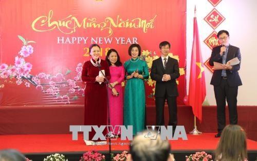 旅居世界各国越南人纷纷举行迎新春活动 hinh anh 2