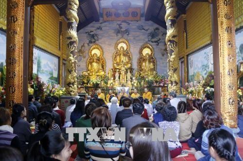 旅居世界各国越南人纷纷举行迎新春活动 hinh anh 1