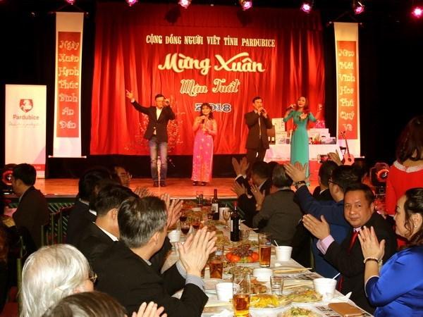 旅居海外越南人纷纷举行迎新春活动 hinh anh 1