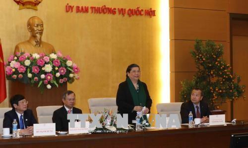 国会副主席丛氏放会见返乡过年的旅泰越南老教师代表团 hinh anh 1