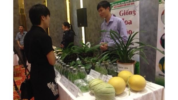 河内市分享有关高科技农业推广应用的经验 hinh anh 1
