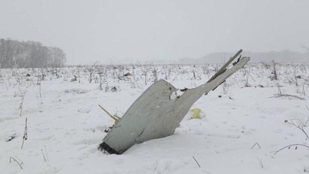 国家主席陈大光就俄罗斯一架客机坠毁致71人遇难向普京总统致慰问电 hinh anh 2