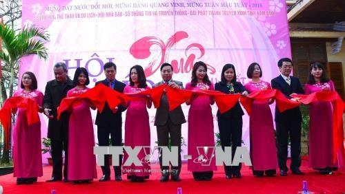 2018戊戌年春节特刊展在全国各省市纷纷举行 hinh anh 1