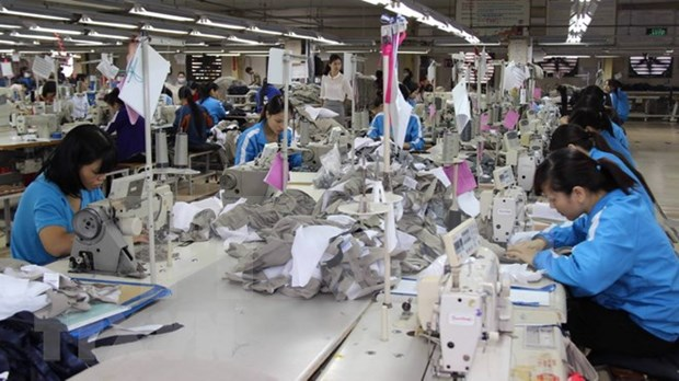 2018年越南纺织服装行业力争出口总额达340亿美元 hinh anh 1