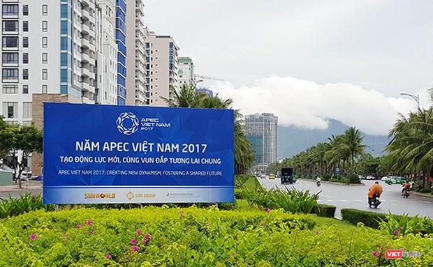 推进岘港市发展的新动力 hinh anh 1