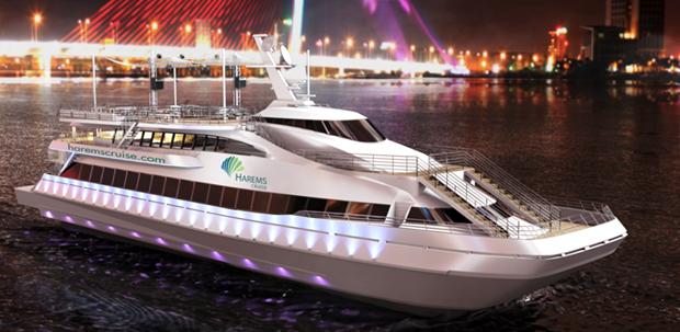 岘港市发挥邮轮旅游优势 促进海洋旅游业发展 hinh anh 1
