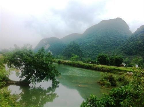 归山河与高平省重庆县边境地区美不胜收的风景 hinh anh 1