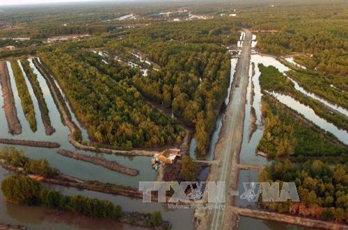 金瓯角国家公园至2025年总体规划及2030年展望出炉 hinh anh 1