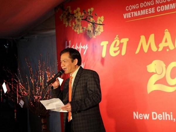 越南驻印度和荷兰大使馆举办多项新春迎新活动 hinh anh 1