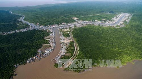 金瓯角国家公园至2025年总体规划及2030年展望出炉 hinh anh 2