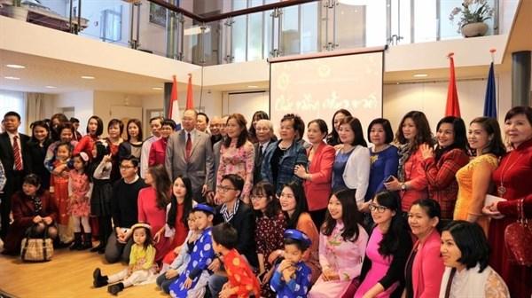 越南驻印度和荷兰大使馆举办多项新春迎新活动 hinh anh 2