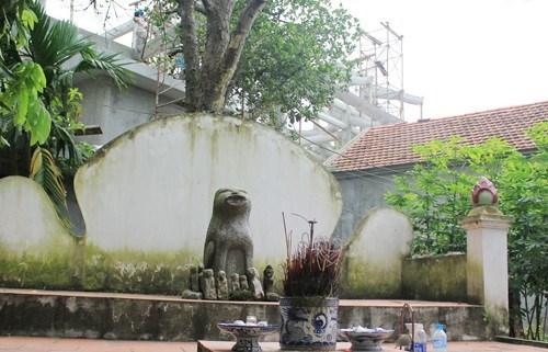 越南民间文化中狗的形象 hinh anh 1
