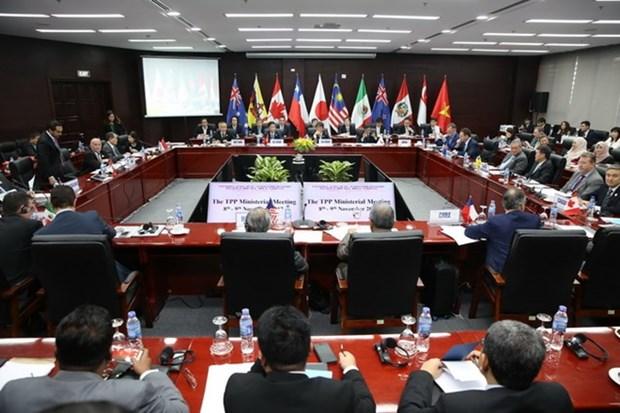 《跨太平洋伙伴关系全面进步协定》全文正式公布 hinh anh 1