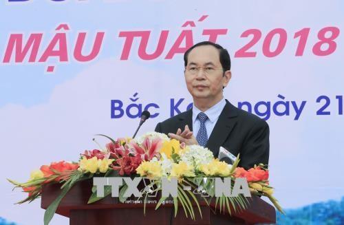 越南国家主席陈大光:为当今和后代保护生态环境可持续发展性 hinh anh 1