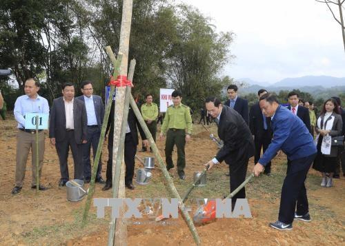 越南国家主席陈大光:为当今和后代保护生态环境可持续发展性 hinh anh 2