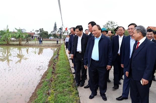 越南政府总理阮春福视察南定省农民生产模式 hinh anh 1