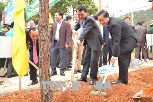 越南国家主席陈大光:为当今和后代保护生态环境可持续发展性 hinh anh 3