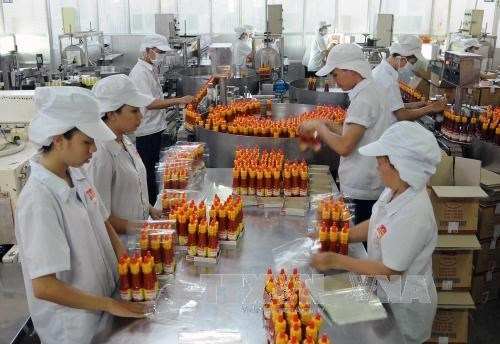 春节后胡志明市众多企业纷纷恢复生产 hinh anh 2