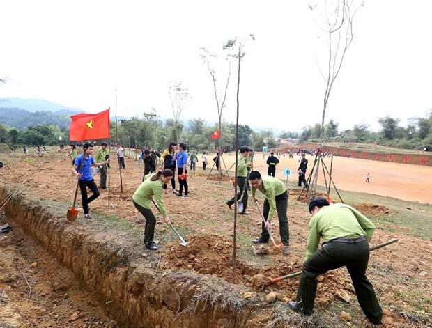 推进植树和造林工作 努力保护环境 hinh anh 1