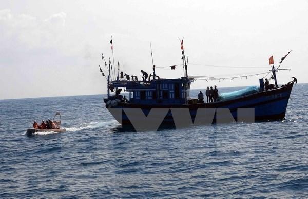 河静省:及时救助海上遇险的11名船员 hinh anh 1