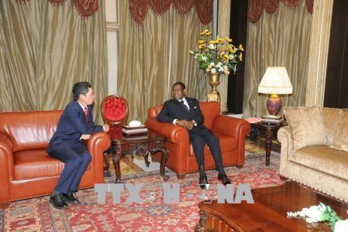 赤道几内亚希望扩大与越南的合作 hinh anh 2