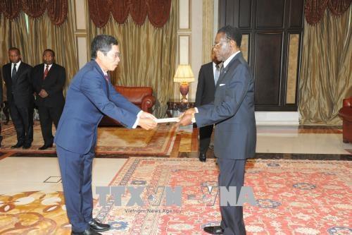 赤道几内亚希望扩大与越南的合作 hinh anh 1