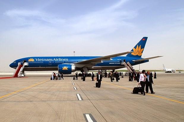 2018年春节期间越南航班数量突破性增长 hinh anh 1
