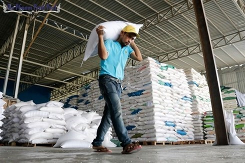 2017年柬埔寨出口总额增长13% hinh anh 1