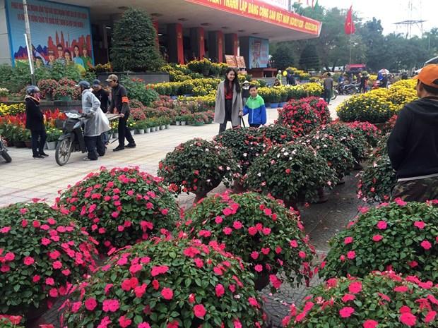 2018戊戌年春节期间得乐省接待游客量增长20% hinh anh 2