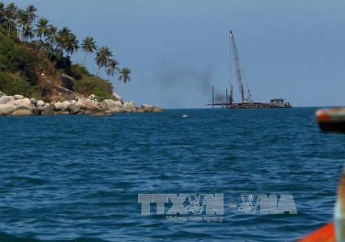 电力唤醒了赖山岛的旅游潜力 hinh anh 1
