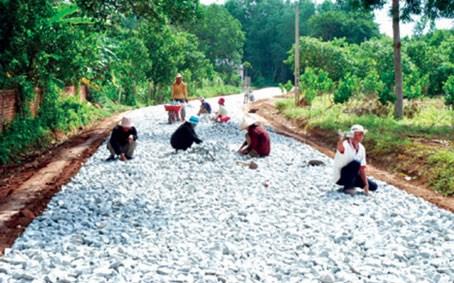 同奈省力争在2018年完成新农村建设工作任务 hinh anh 1