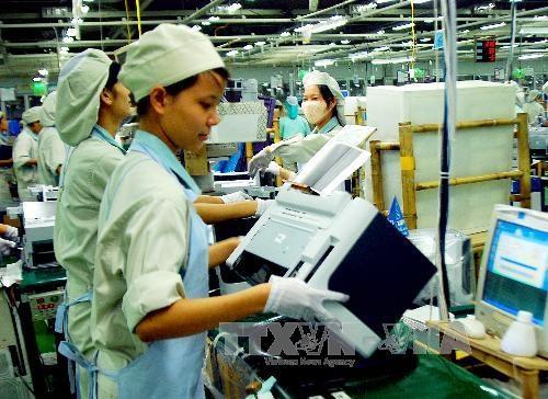 澳大利亚罗伊国际政策研究所高度评价越南经济结构重组进程 hinh anh 1