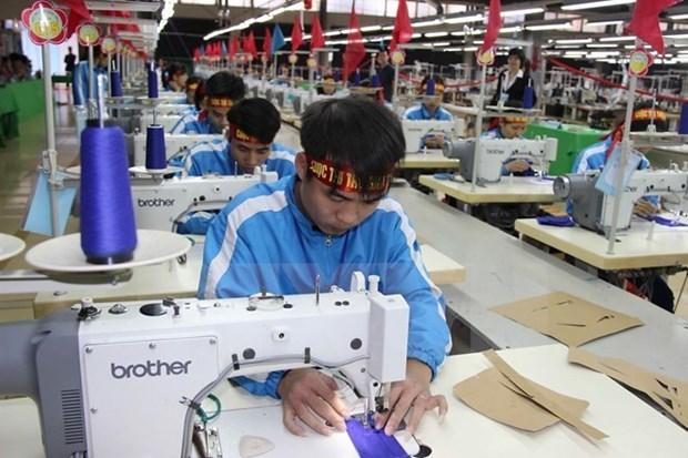 平阳集中协助企业提高竞争力 hinh anh 1