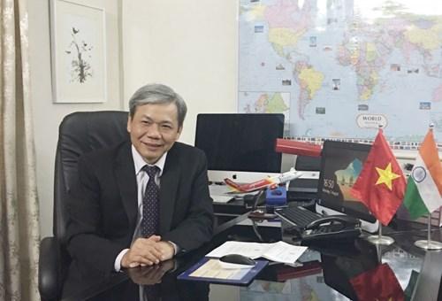 越南驻印度大使:越印全面战略伙伴关系发展势头日益强劲 hinh anh 1