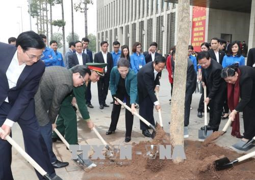 阮氏金银参加在国会大厦周围进行的羊蹄甲树植树活动 hinh anh 1