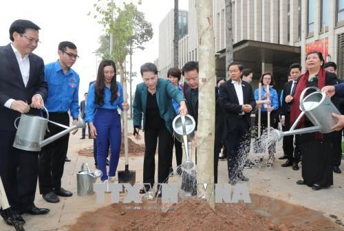阮氏金银参加在国会大厦周围进行的羊蹄甲树植树活动 hinh anh 2