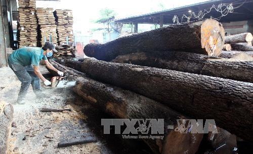 2018年木材和木制品的出口情况 hinh anh 1