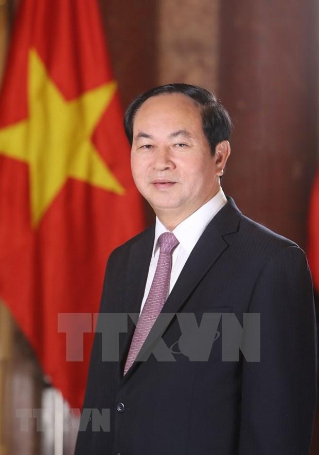 越南国家主席陈大光:国防安全合作是越印颇有成效的领域 hinh anh 1