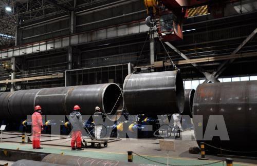 越南钢铁协会:在必要情况下将美国诉诸世界贸易组织 hinh anh 1